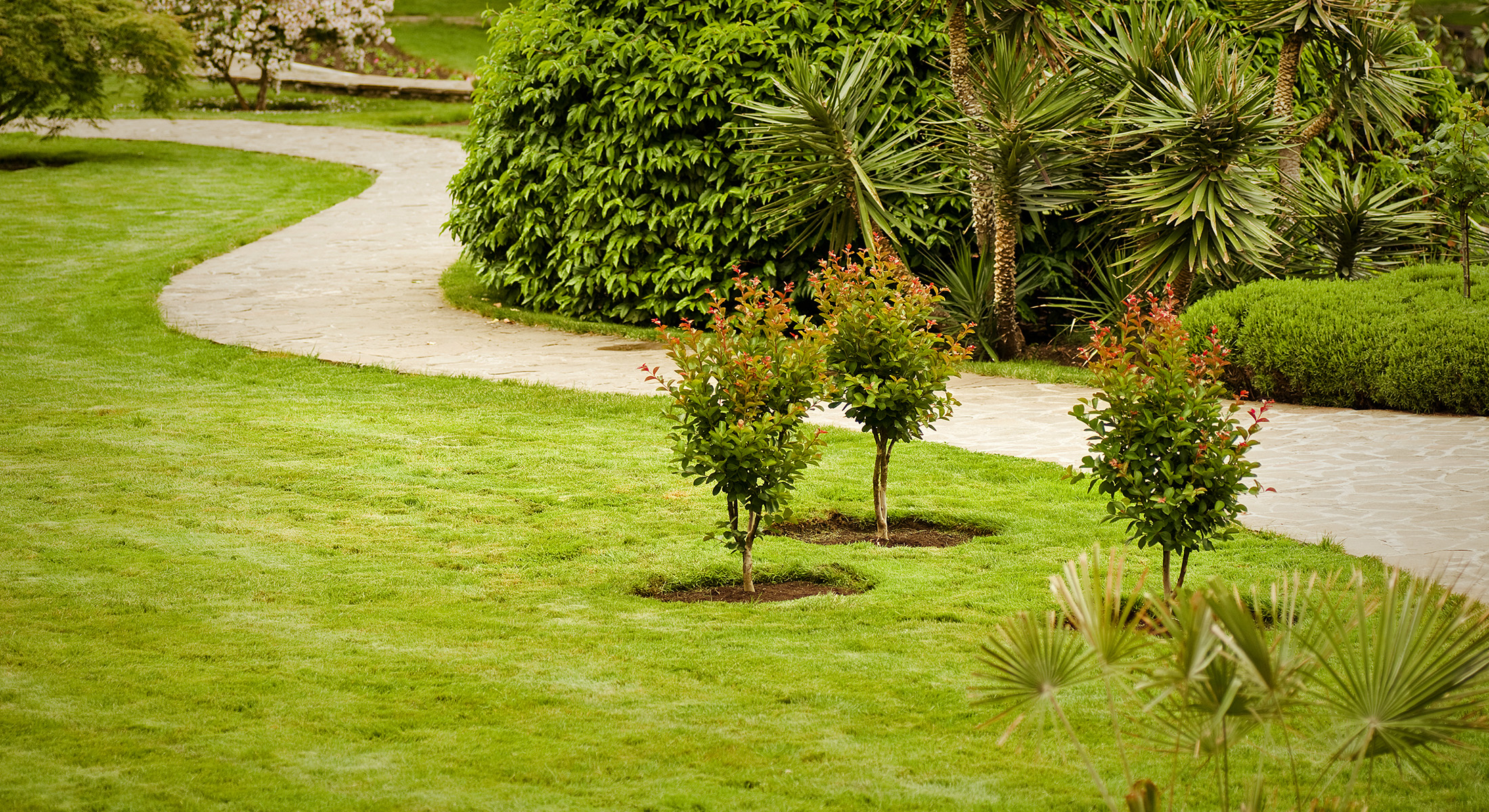 commercial landscaping stuart fl