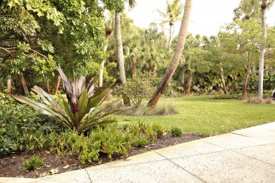 RESIDENTIAL LANDSCAPE MAINTENANCE