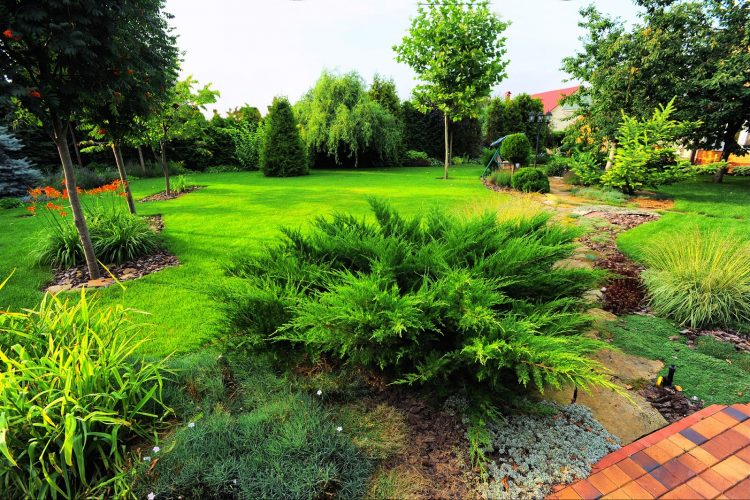 Why Hire a Landscape Design Company