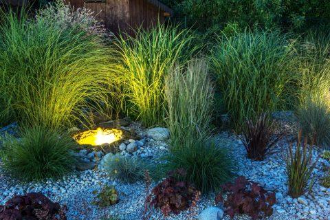 Ideas For Landscape Lighting